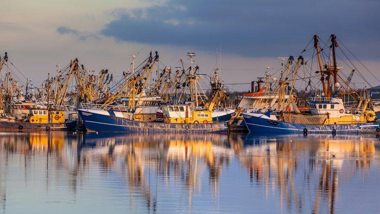 Nieuw onderzoeksproject voor innovatie visserij gehonoreerd